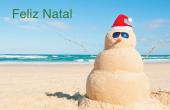 Datas comemorativas e ocasiões especiais holiday card 15