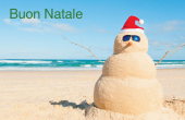 Festività e occasioni speciali holiday card 15