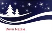 Festività e occasioni speciali holiday card 24