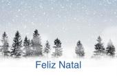 Datas comemorativas e ocasiões especiais holiday card 49