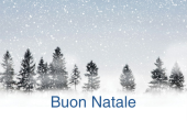 Festività e occasioni speciali holiday card 49