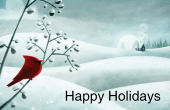 Holiday & Special Occasions holiday card 4