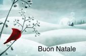 Festività e occasioni speciali holiday card 4