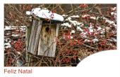Datas comemorativas e ocasiões especiais holiday card 107
