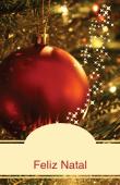 Datas comemorativas e ocasiões especiais holiday card 101