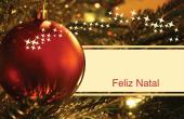 Datas comemorativas e ocasiões especiais holiday card 102