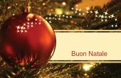 Festività e occasioni speciali holiday card 104