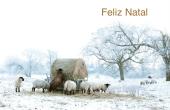 Datas comemorativas e ocasiões especiais holiday card 98