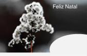 Datas comemorativas e ocasiões especiais holiday card 100
