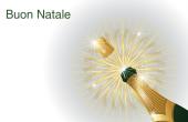 Festività e occasioni speciali holiday card 20
