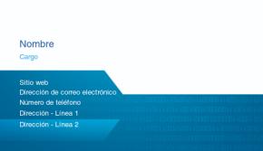 IT/ Ingeniería Tarjeta Profesional 37