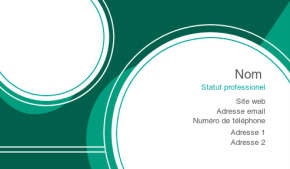Business et Consulting Carte de visite 117